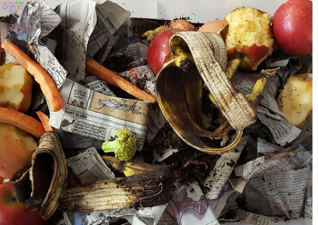worm composting bin with worms, dirt, banana peel, carrot sticks, newspaper, and apples.
