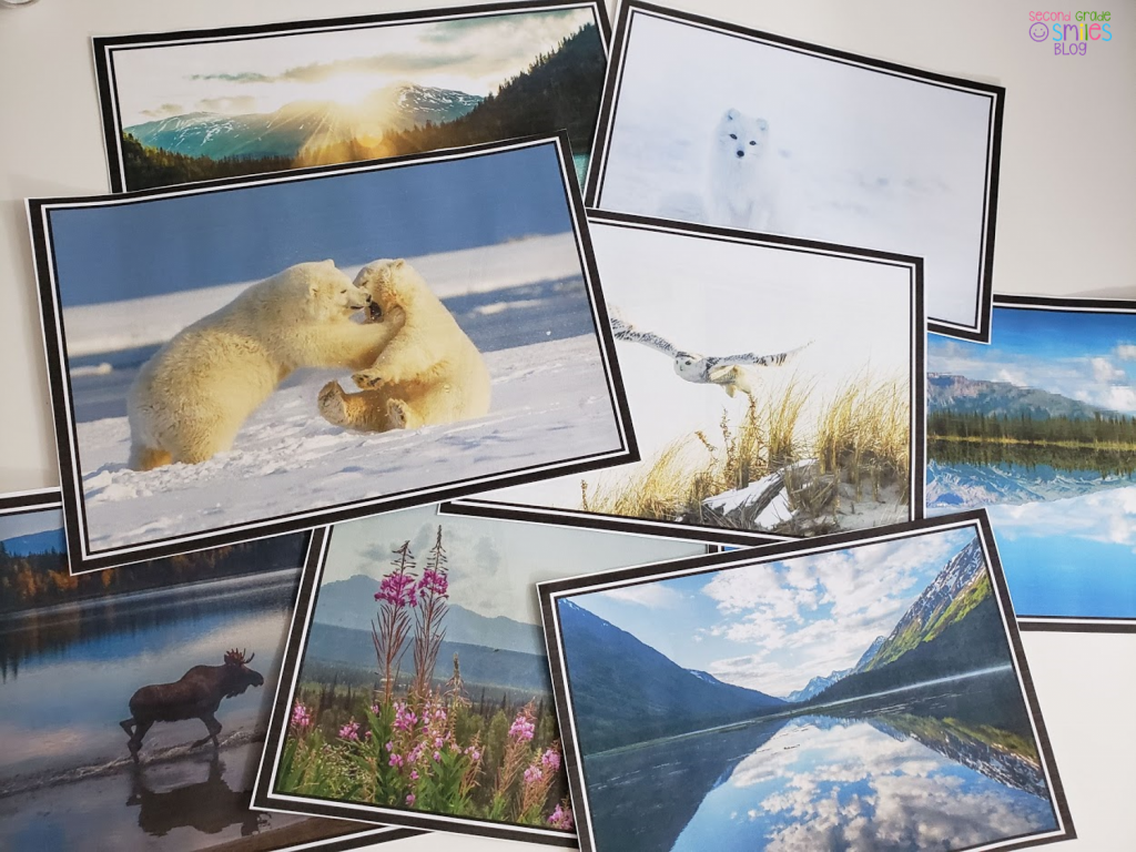 calming photos of Alaska for classroom calm space